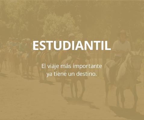 Estudiantil